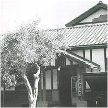 長野県に「豊野病院」を開設